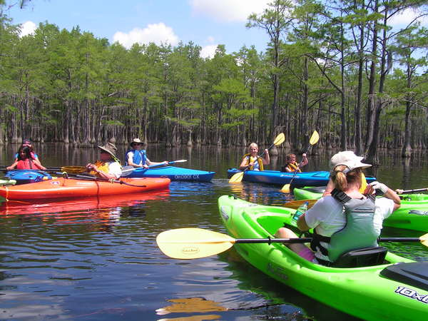 GCA Canoe & Kayak swamp trip