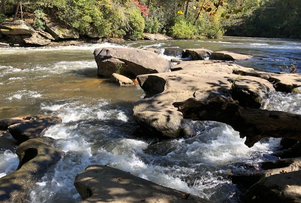 Toccoa River Paddle –  May 8th (Class I-II)